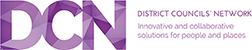 District Councils' Network
